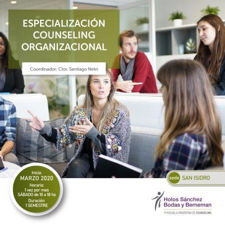 Especialización Counseling Organizacional